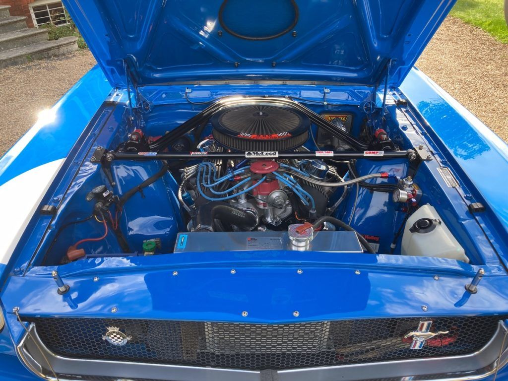 SHELBY ENGINE